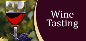 Wine - Vineyard Tours